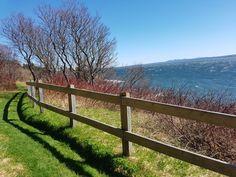 Parc Forillon, Gaspésie Garden Bridge, Deck, Outdoor Structures, Outdoor Decor, Home Decor, Park, Homemade Home Decor, Front Porches, Decks