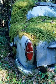 Mother Nature meets rust