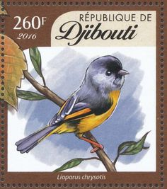 Golden-breasted Fulvetta stamps - mainly images - gallery format
