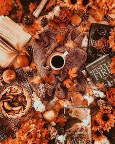 image découverte par ciera$$. Découvrez (et enregistrez !) vos images et vidéos sur We Heart It Autumn Cozy, Autumn Trees, Autumn Leaves, Autumn Coffee, Autumn Fall, Fallen Leaves, Autumn Nature, Cute Fall Wallpaper, Halloween Wallpaper