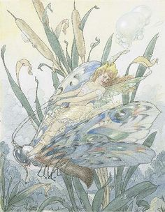"""≍ Nature's Fairy Nymphs ≍ magical elves, sprites, pixies and winged woodland faeries - """"The Dragonfly Fairy"""" by HAROLD GAZE (1885-1962)"""