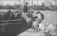 Πειραιάς λιμάνι τη δεκαετία του 20