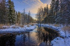 World Wide Snow Forest, Forest River, Nature Pictures, Free Pictures, House Near River, River Painting, Mountain Wallpaper, Bare Tree, Winter Scenery
