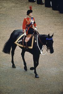 Trooping the Colour. The Queen used to inspect the troops on horseback side-saddle until some time in the 80s (someone do correct me if I'm wrong on that) when she started riding in a horse-drawn carriage instead. @Donna Hyland