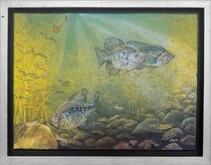 Crappie Bed by Melissa Mickelson - view in room