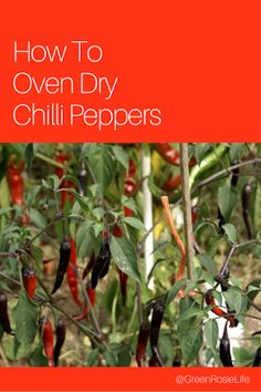 A Green and Rosie Life: Oven Dried Chillies