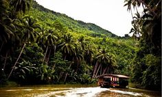 The Loboc River in Bohol is kilometres of clean water and lush vegetation. One can experience the river cruise offered here where you can enjoy an. Floating Restaurant, Philippines Beaches, Cruise Offers, Bohol, Tourist Spots, Beach Holiday, Resorts, Lush, Singers