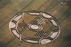 1999.07.21 (62m), Liddington Castle, near Swindon, Wiltshire, blé [2]