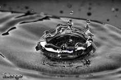 Fabio Ton, the highly creative photographer from Italy has one of the most talented #Photographer's on Tallenge. This close up shot of a water droplet is one of the most famous photos in the #Tallenge #BlackandWhite #Photography #Contest and you can vote for this entry by clicking here, http://tlng.me/1L5RiaX. You can participate in all the cool #Contests on Tallenge by clicking here, http://www.tallenge.com/contestcalendar