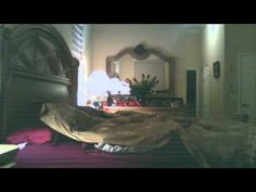 REAL PARANORMAL ACTIVITY? Maybe. Most of the pulling is from where the camera doesn't see... The other side of the bed and at the foot. We also can not see the light switch.
