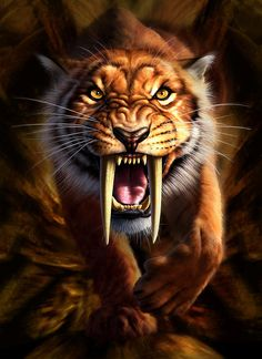 Sabertooth Smilodon Art_by by Jerry Lofaro Image Tigre, Tiger Wallpaper, Tiger Art, Extinct Animals, Prehistoric Creatures, Tiger Tattoo, Animal Posters, Tier Fotos, Big Cats