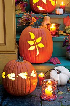 Illuminating Fall Leaf Pumpkin - 33 Halloween Pumpkin Carving Ideas - Southernliving. To create our illuminating Halloween pumpkin, first, download and print one of our leaf templates listed below. Cut the bottom off a pumpkin, and remove the seeds and pulp. Place the leaf template in your desired spot, pin in place, and then trace the design onto the pumpkin with a pencil. Using a pumpkin-carving tool, cut out the traced leaf design. Cut pieces of yellow vellum, and pin them to the inside…
