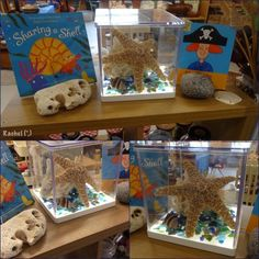 Beach finds in the LED box - from Rachel (,) Play based activities related to beaches, holidays and the ocean for the Early Years classroom or setting - from Stimulating Learning with Rachel Preschool Themes, Science Activities, Preschool Science, Science Ideas, Sharing A Shell, Curiosity Approach Eyfs, Curiosity Box, Early Years Classroom, Beach Play
