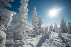 452 by ixpert  sunshine снег горы siberia шерегеш геш весеннее солнце 452 ixpert
