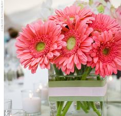 Square vases were wrapped with green-striped ribbon and filled with pink flowers, such as gerbera daisies.