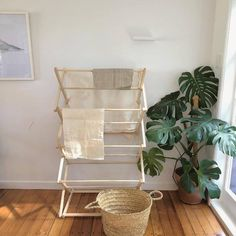 The folding wooden dryer rack that everyone needs! No more wire racks with this pine clothes horse. Made in NZ. Outdoor Chairs, Outdoor Furniture, Outdoor Decor, Wooden Clothes Drying Rack, Wire Racks, Shop Around, Ladder Decor, Living Spaces, Accent Chairs