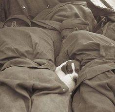 Fotos de la Segunda Guerra y su explicacion- P19