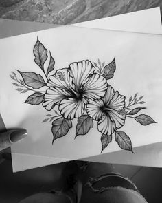 Most current Pics Hibiscus drawing Strategies Hibiscus vegetation is tropical beauties that will take a tropical turn to your garden. Hibiscus Flower Drawing, Hibiscus Flower Tattoos, Plumeria Tattoo, Flower Art, Hawaiian Flower Tattoos, Orchid Tattoo, Tattoo Sketches, Tattoo Drawings, Body Art Tattoos