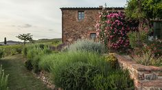 The coutnry house Follonico awaits you with 4 suites and 2 rooms near Montepulciano in southern Tuscany with slow living and regional products. Whirlpool Jacuzzi, Pool Pool, Small Luxury Hotels, The Province, Vineyard, Around The Worlds, Country Roads, Italy, Boutique Hotel