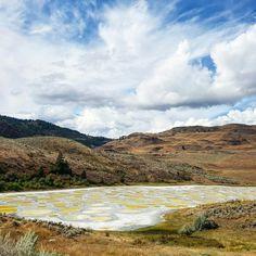 Spotted Lake (Плямисте озеро)