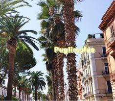 Luxushotels in Bari - Puglia. Design Hotel, Bari, Boutique Hotels, Luxury Travel, Best Hotels, Palazzo, Super, Internet, Romantic Vacations