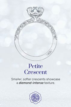 One of our most popular ring collections, the Petite Crescent has been refined and redesigned to have softer, smaller Classic Crescent detailing. This diamond forward collection shines brilliantly with the unique Tacori Touch. #PetiteCrescent #Tacori #TacoriRing #details #engagementring Tacori Rings, Tacori Engagement Rings, Rings N Things, Classic, Collections, Windows, Touch, Popular, Elegant