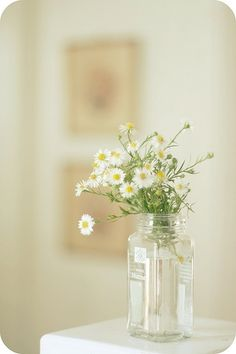 Daisies are such friendly flowers...and they are my favorite