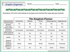 Amy Brown Science: Free Graphic Organizer for Comparing Groups of Living Plants