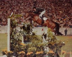 Joe Fargis and Touch of Class: a little mare with a big heart (and jump!) One of my VERY favorites growing up!