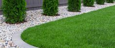 9 Beautiful Backyard Ideas for Small Yards – Garden Ideas 101 Backyard Ideas For Small Yards, Backyard Pool Designs, Back Gardens, Small Gardens, Indoor Garden, Outdoor Gardens, Landscape Design, Garden Design, Plantation