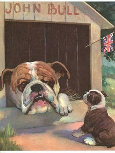 1955 Dog Print English Bulldog Puppy Wesley Dennis Vintage Book Illustration   eBay