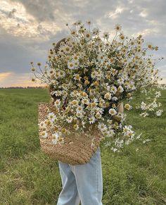 Nature Aesthetic, Flower Aesthetic, Summer Aesthetic, Aesthetic Photo, Aesthetic Pictures, Arte Obscura, Jolie Photo, Pretty Pictures, Aesthetic Wallpapers