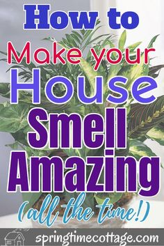 Make your home smell amazing by using these wonderful tips and tricks that will kill bad smells and fill your home with sweet aromas. Use these home smell tips and tricks to make your home smell good all the time. #homesmellhacks #smellhacks #homesmell #hacks #cleaninghacks #householdhacks #cleaningtipsandtricks Diy Home Cleaning, Household Cleaning Tips, Homemade Cleaning Products, Cleaning Recipes, House Cleaning Tips, Natural Cleaning Products, Household Cleaners, Window Cleaning Tips, Cleaning Mold
