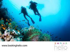 VIAJES EN PAREJA. Para seguir creando recuerdos fascinantes de tus vacaciones en República Dominicana, en Booking Hello te recomendamos salir a conocer los sitios turísticos de los alrededores con tu pareja. Isla Catalina, es uno de los lugares más recomendables para practicar buceo o snorkeling y observar la belleza submarina de sus arrecifes coralinos. #escapatealcaribe