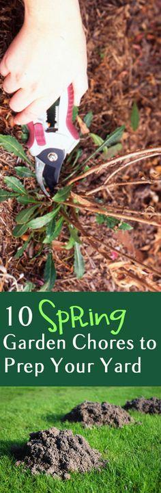 10 Spring Garden Chores to Prep Your Yard