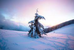 Fresh snow on top of Mary's Peak OR [5082x3482] [OC]