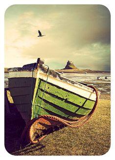 A pea green boat~