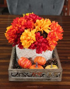 Fall centerpiece with little pumpkins and pinecones. LOVE the colors of this season!