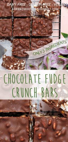 Fudge bars with puffed grain crunch and only 3-ingredients by Green Smoothie Gourmet! So healthy, and energizing! #vegan #dairyfree #3ingredients #easyrecipe via @greensmoothiegourmet