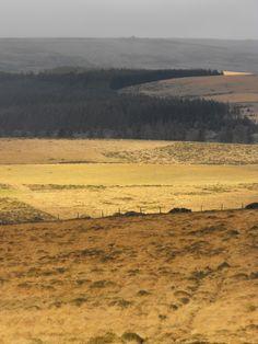 Dartmoor Dartmoor, Britain, Ireland, Spaces, Mountains, Nature, Travel, Viajes, Traveling