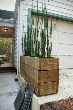 Horsetail reed + recycled wood Love the long narrow pot! Horsetail reed in recycled wood containers. Timbers from a demo deck. Like the reeds. Wood Planter Box, Wood Planters, Planter Ideas, Tall Planters, Outdoor Planter Boxes, Tall Planter Boxes, Front Yard Planters, Recycled Planters, Backyard Planters