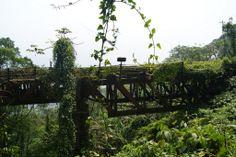 Caminho da Funicular/Viaduto 7-Paranapiacaba á Cubatão | Construída em 1901 e abandonada em 1981