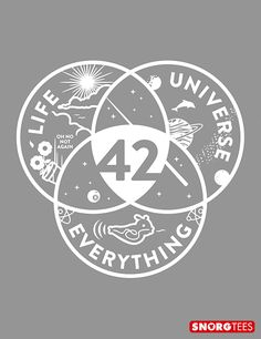 The answer to life, universe and everything (42) t-shirt.