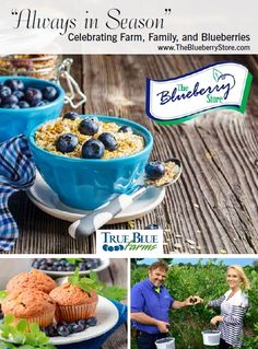 Gourmet Michigan Blueberry Products and Fresh and Frozen Michigan Blueberries | The Blueberry Store -- South Haven