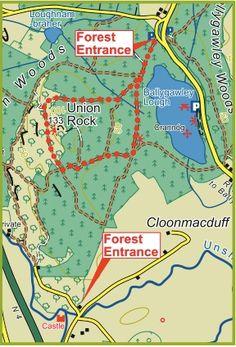Sligo Walks - Union Wood
