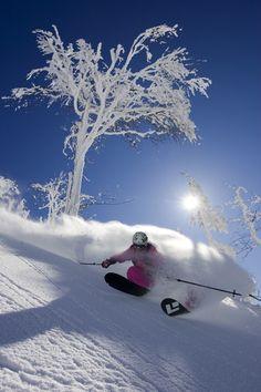 Pow Ski