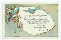 may the bluebird of happiness quotes - Yahoo Search Results