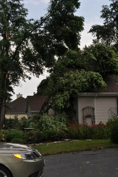 Trees land on residential homes during this storm. Gonna need some #roof work! #toledo #roofing