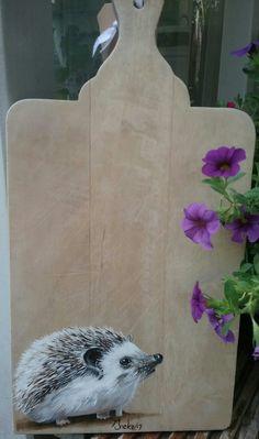 Witbuik egeltje met acryl geschilderd op een mooi  plankje door Ineke Nolles.