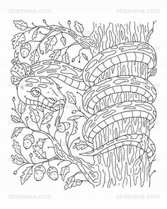 Reptiles Printable Coloring Pages: Snake and Lizard Frog Coloring Pages, Printable Coloring Pages, Coloring Books, Forest Animals, Woodland Animals, Snake Drawing, Emergency Preparedness Kit, Coloring Sheets For Kids, Cute Turtles